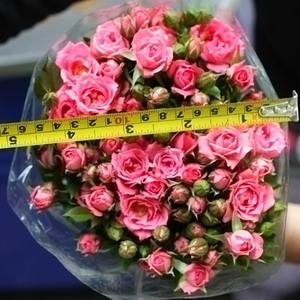Fresh Cut Flowers-Spray Roses-02