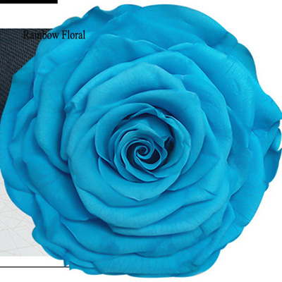 9-10CM Big Size preserved Rose head(1pcs-box)-05