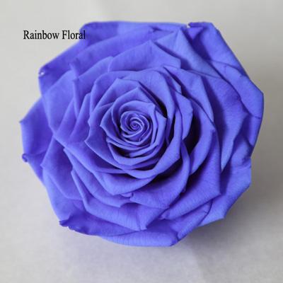9-10CM Big Size preserved Rose head(1pcs-box)-17