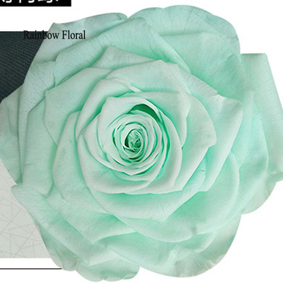 9-10CM Big Size preserved Rose head(1pcs-box)-06