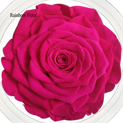 9-10CM Big Size preserved Rose head(1pcs-box)-11