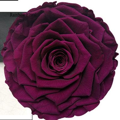 9-10CM Big Size preserved Rose head(1pcs-box)-02