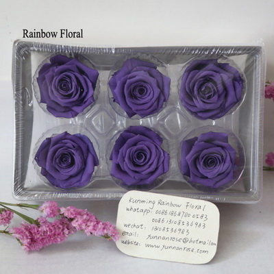 5-6CM (6pcs-box) Solid color preserved rose head-08