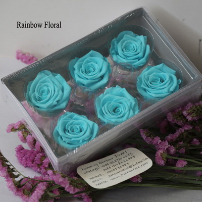 5-6CM (6pcs-box) Solid color preserved rose head-06