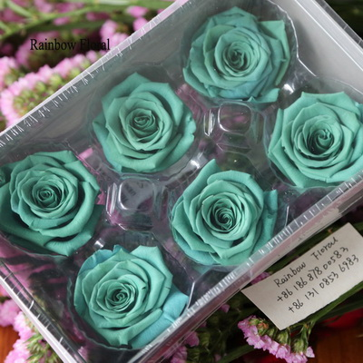 5-6CM (6pcs-box) Solid color preserved rose head-03