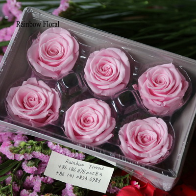 5-6CM (6pcs-box) Solid color preserved rose head-18