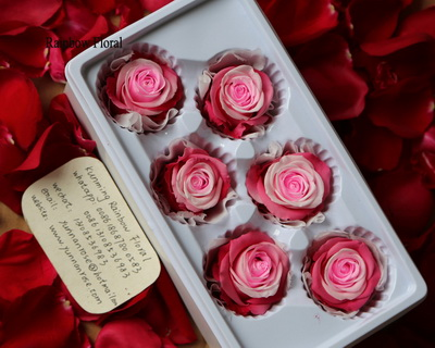 5-6CM(6pcs-box) Bi-color preserved rose head-07