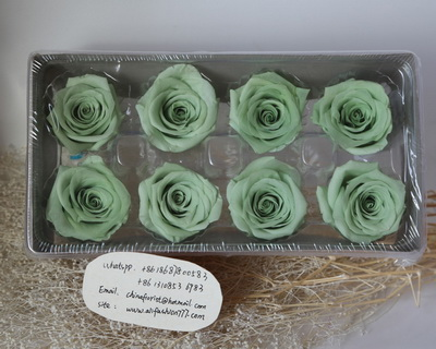4-5CM (8pcs-box) Solid color preserved rose head-03