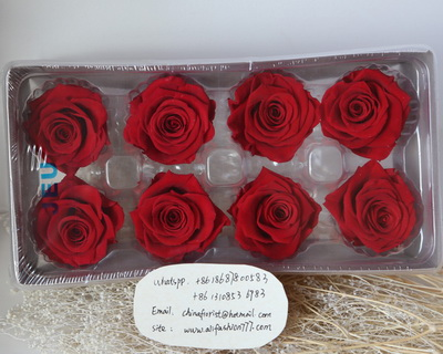 4-5CM (8pcs-box) Solid color preserved rose head-02